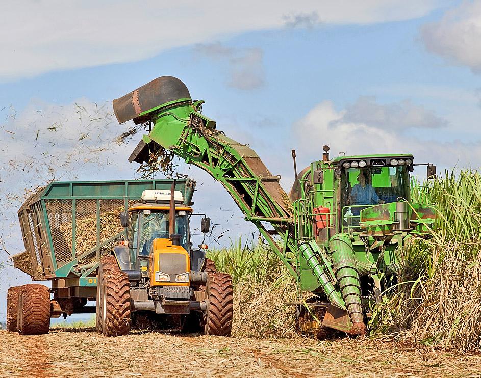 Na colheita de cana tem que levar em consideração a qualidade da operação
